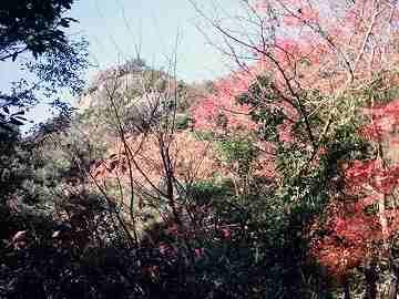 shodoshima013.jpg