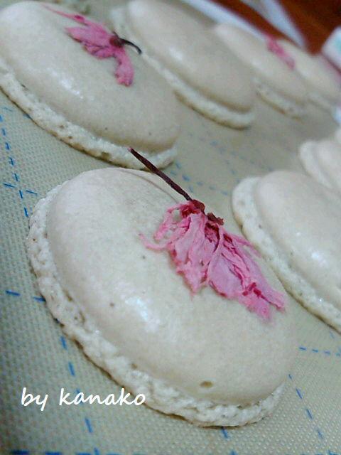 1桜マカロン9
