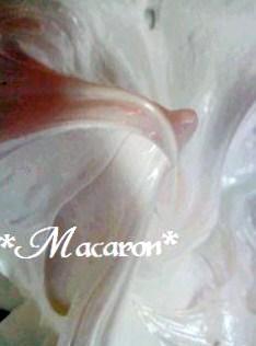 1桜マカロン13