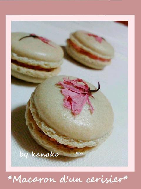 1桜マカロン18