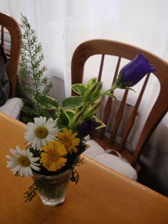 かなちゃんのお花