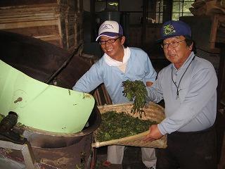 釜炒り茶製造1