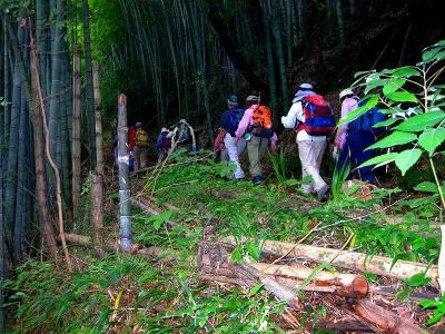 2007.7.22井原山 004