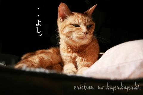 090303_ruichan_001.jpg