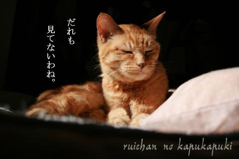 090303_ruichan_002.jpg