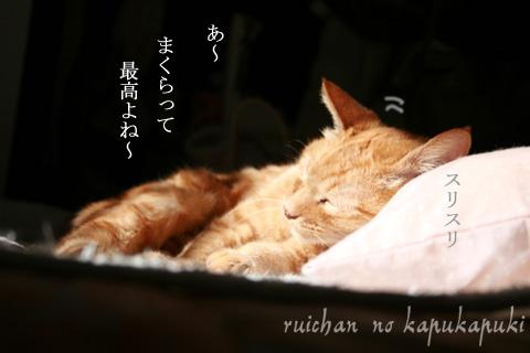 090303_ruichan_004.jpg