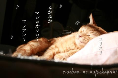 090303_ruichan_005.jpg