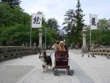 松岬公園で