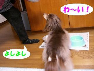 実家 (3)