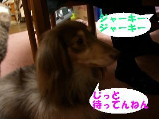 実家 (6)