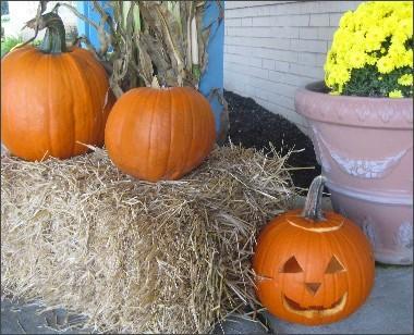pumpkins2008