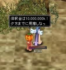 20070607185300.jpg