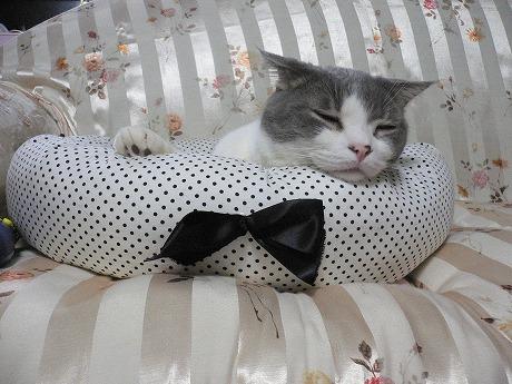 眠くなる4