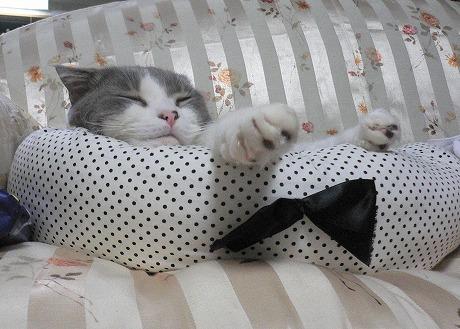 眠くなる5