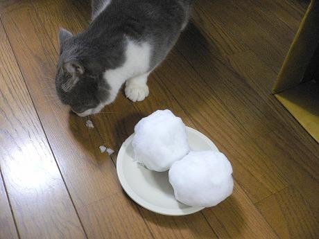 雪です9-1