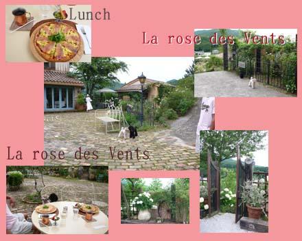 Rose GardenB