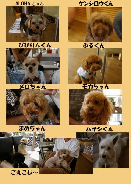 FRIENDのコピー