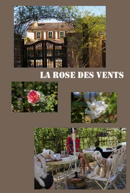 薔薇1のコピー