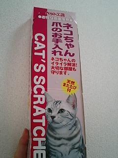 ネコの爪磨き