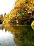 紅葉水鏡01_水が澄んでいて川底も見えています。