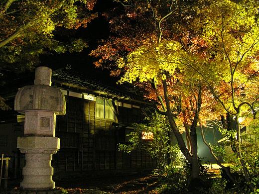 山荘裏手の石灯籠と 逆光で透過色のもみじ(ヨコ)