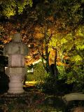 山荘裏手の石灯籠と 逆光で透過色のもみじ(タテ)