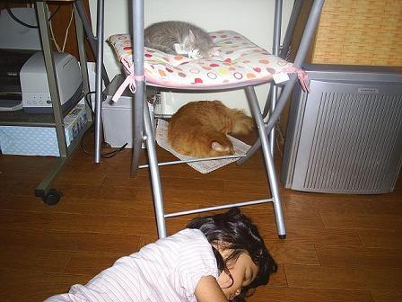 みんな寝た