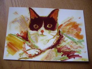 富樫 祐子 個展「Cat Scratch」