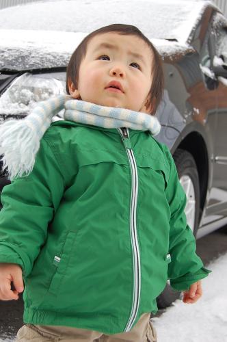 雪やこんこん3