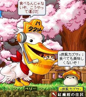 Maple0005_20090326012505.jpg