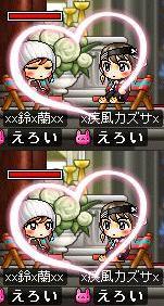 Maple0018_20080902014125.jpg