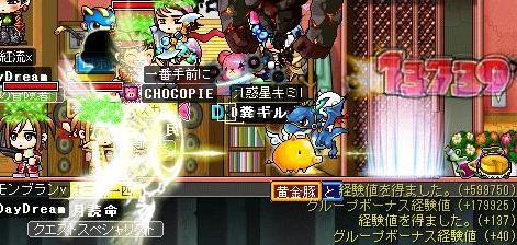 Maple0061_20090326012616.jpg