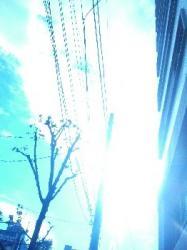 071119_001.jpg