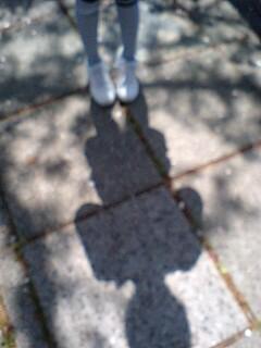 yumiの影と桜の花びら達
