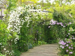イングリッシュガーデンの庭