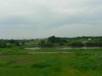 緑鮮やか、川濁りすぎ