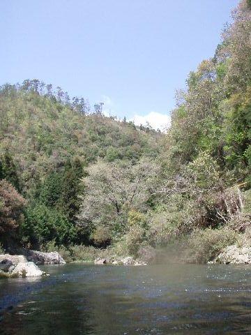 根笠川の風景