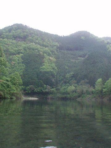 川に映った緑がキレイ…