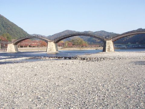 陸から見た錦帯橋~♪