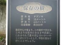 2009_0915繧ュ繝」繝ウ繝・023_convert_20090915134119