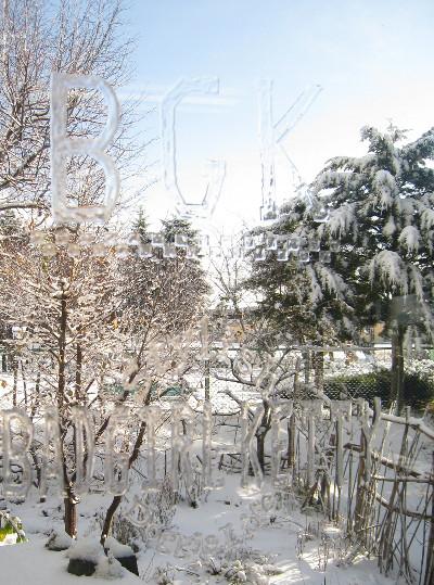 2009年11月29日初雪