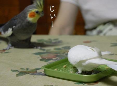 食べたい……
