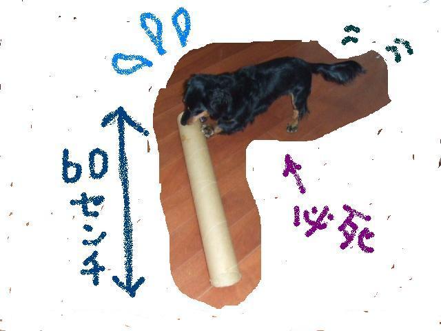 2005_12060262.jpg