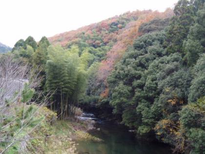 20091129-7.jpg