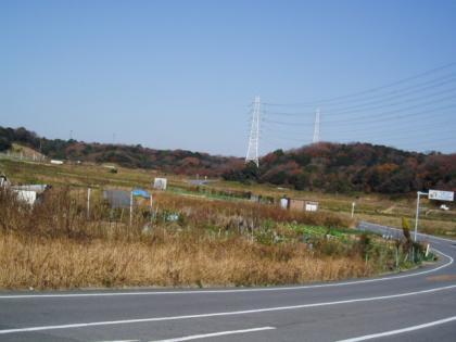 20091222-3.jpg