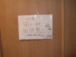 2007_1110kinakuri0314.jpg