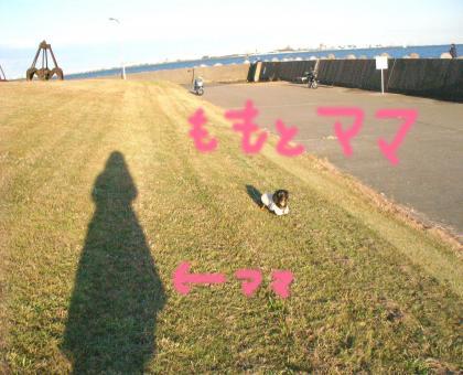 10_convert_20081201215415.jpg