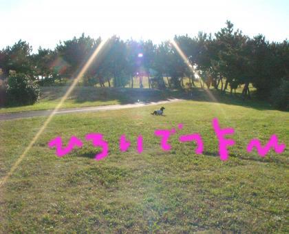 4_convert_20081201215129.jpg