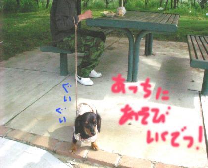 huttu4_convert_20081013135501.jpg