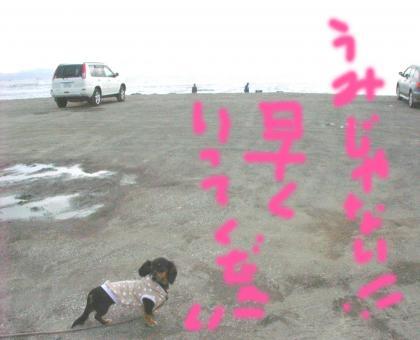 huttu6_convert_20081013135549.jpg